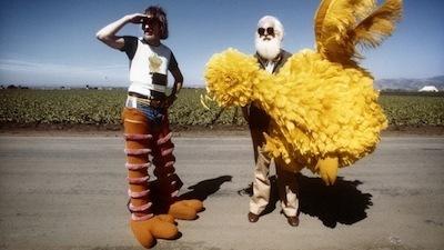 LAFF - i am big bird